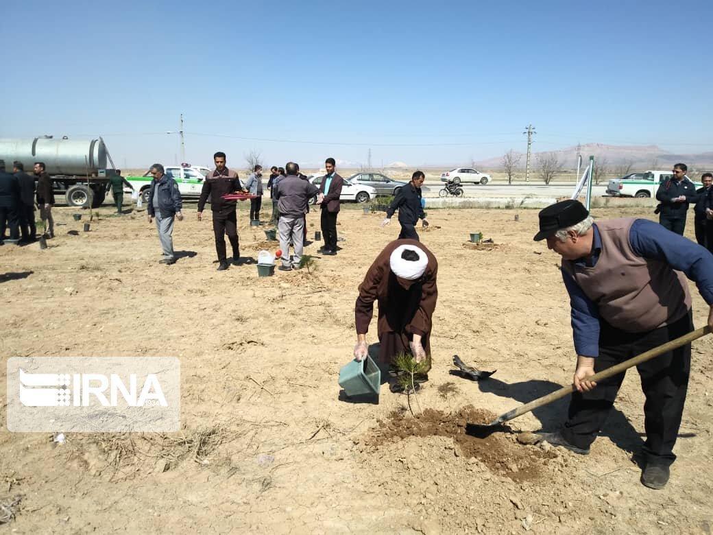 خبرنگاران کاشت نهال در مسیرهای منتهی به کربلا شروع شد